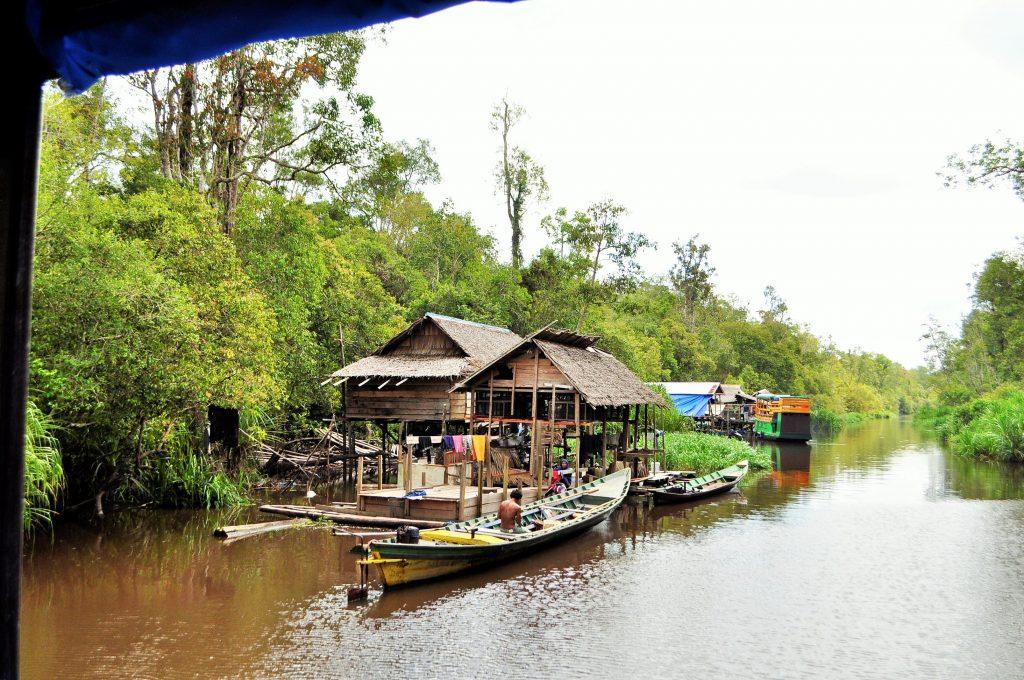 Ir en klotok por Borneo - Haz La Mochila